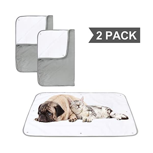 Paw Legend Multiple Sizes Waterproof Dog Blanket for Couches,Sofa,Bed and Car | Pet Fleece Incontinence Blanket Pad for Dogs,Puppies,Cats and Kids