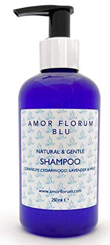 Natural CHAMPÚ - ALOE VERA, GERANIO, CEDRO, LAVANDA & MENTA - 250ml de AMOR FLORUM BLU. Sin Sulfatos, Sin Parabenos, Sin Silicona. pH 5.2-5.7 para Pieles Sensibles. 99,5% Derivado de Plantas.