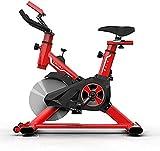 Bicicleta de spinning Bicicletas de ejercicio Sala de ejercicios Equipo de gimnasia deportiva de interior ultra silenciosa...