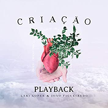 Criação (Playback)