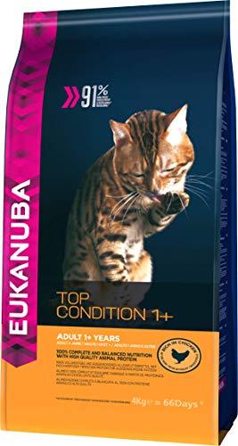 Eukanuba Premium Katzenfutter, 100{7fd01b1ff404a61fccd91b0fdbcdb575920e5eb2613c01ebcd1703c0bdd16910} ausgewogenes Trockenfutter mit viel Huhn, abgestimmt auf erwachsene Katzen, 4 kg