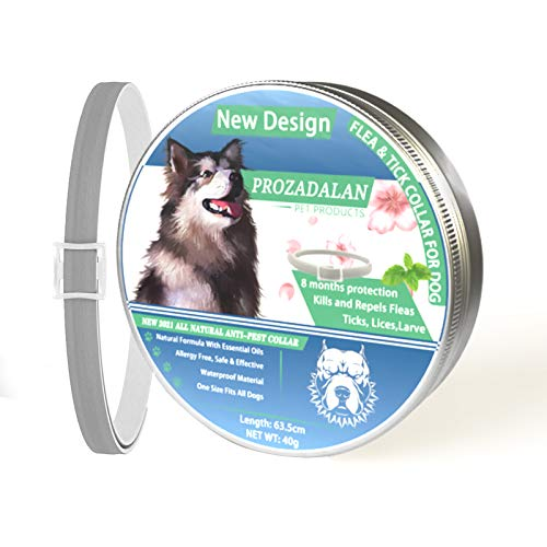 Collare Antipulci Cane, 100% Naturale Impermeabile Antiparassitario per Cani, 63.5cm Regolabile per Cani Contro Antipulci Cane, Aiutare i Cani a Respingere Efficacemente Pidocchi, Pulci e Parassiti