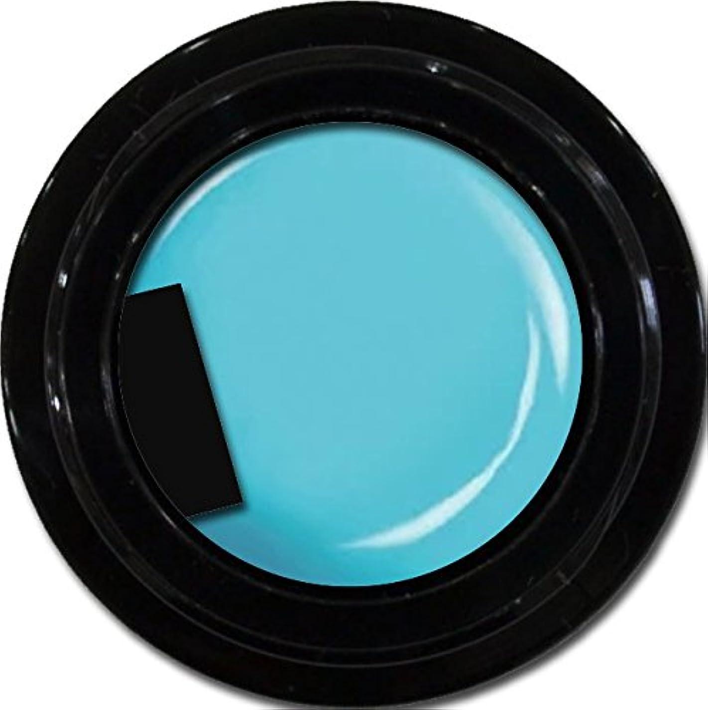 抜本的な成果排他的カラージェル enchant color gel M706 Turquoise 3g/ マットカラージェル M706 ターコイズ 3グラム