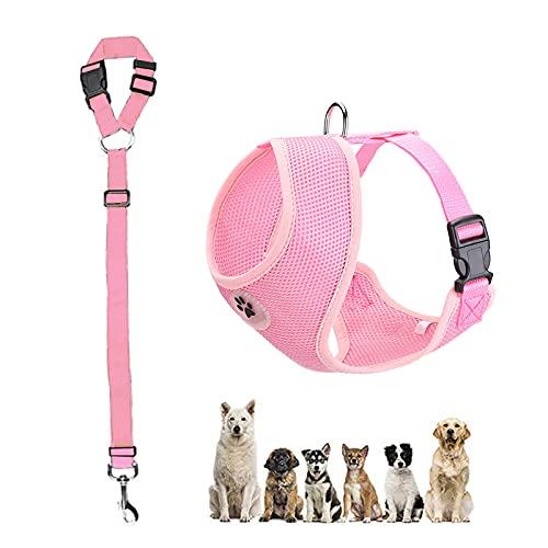 LVGOD Arnés De Coche para Perros con Cinturón De Seguridad Forro De Tela Transpirable Hebilla para El Cinturón De Seguridad del Coche Cuerda Ajustable para Perros Pequeños Medianos Y Grandes
