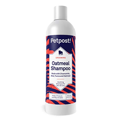 best dog shampoo for dry itchy skin