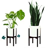 Fox & Fern Adjustable Plant Stand - Excluding White Ceramic Planter...