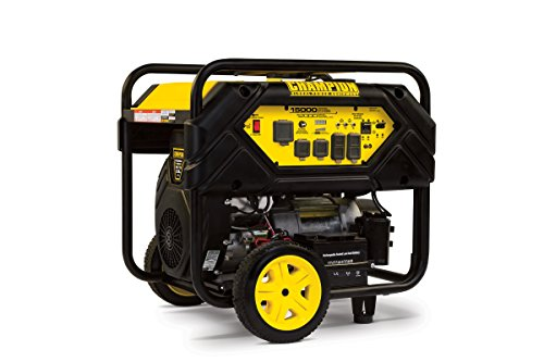 Champion 12,000-Watt Portable Generator with Electric Start and Lift Hook
