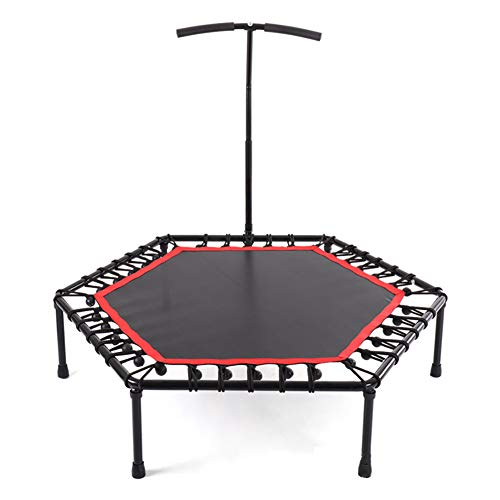 LINLIN Indoor Mini Exercise Trampoline for Adults with Bar, Best Home Gym for Fitness & Lose Weight Workout Exercise Fitness Bouncer, Silent & Thick PP Jump Cloth,48""