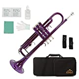 Eastrock Standard Bb Trumpet Brass Set for Student Beginner Brass Instrument with Hard Case, Gloves, 7C Mouthpiece, Valve Oil and Trumpet Cleaning Kit (Purple)