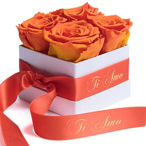 ROSEMARIE SCHULZ Heidelberg Rosenbox Flowerbox mit Infinity Rosen konservierte Blumen Valentinstagsgeschenk der Liebe für Damen (Ti Amo, Orange)