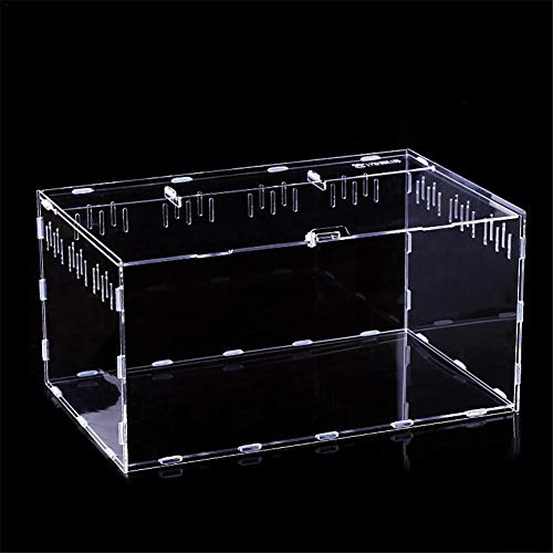 precauti Caja de Reptil de acrílico Transparente para Reptiles, 30 x 20 x 15 cm