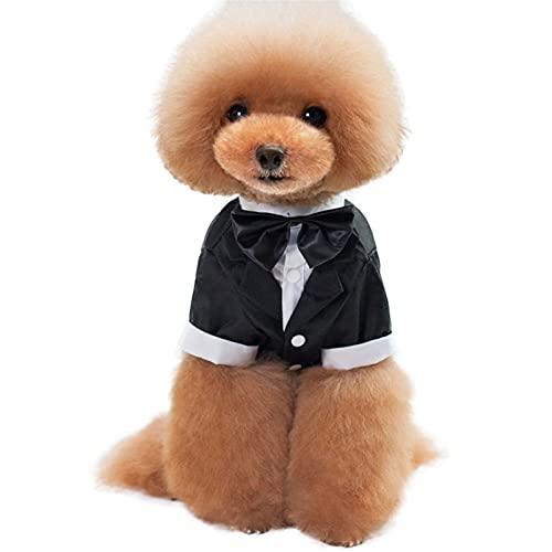 LDGS&TTW Dog stxedo Traje Puppy Ropa de Cachorro Abrigo Disfraz de Perrito...