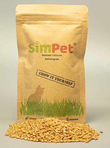 Bio Katzengras Samen ca. 3500(140g) aus Deutschland Süßgras Versand am gleichen Tag Wieder verschließbar