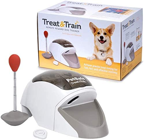 PetSafe - Système de Dressage pour Chien Treat & Train - Manners Minder, Dressage Positif pour Tous Types de Chiens, ...