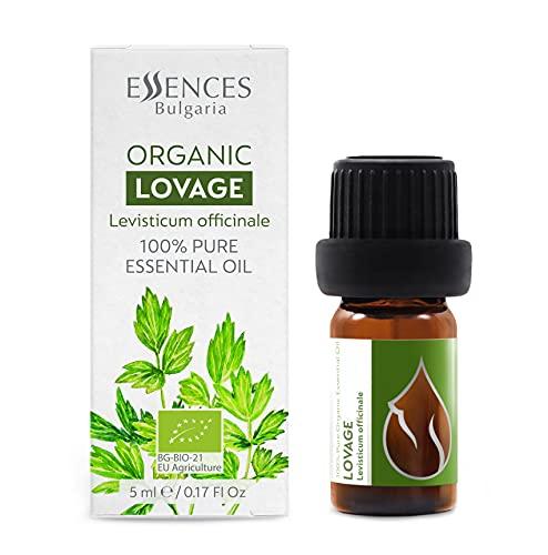 Aceite Esencial Biológico de Levístico (Levisticumofficinale), 100% natural, orgánico certificado, de la más alta calidad de nuestra propia empresa familiar, calidad terapéutica, aceite de lovage 5ml
