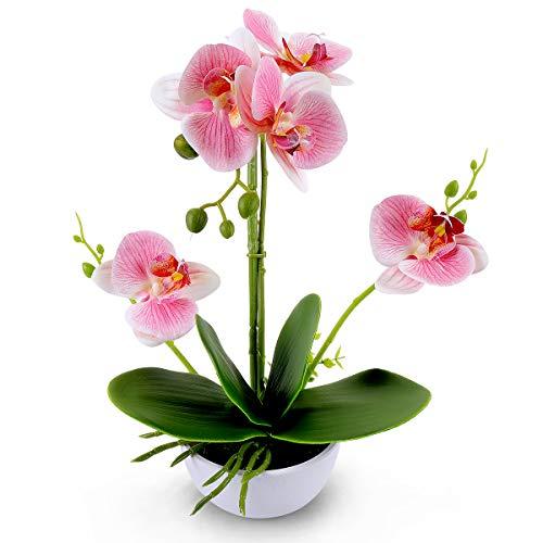 RERXN Flores artificiales decorativas de orquídea bonsái con macetas de Phalaenopsis para decoración del hogar y la oficina (rosa)