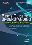 Understanding the Insurance Industry - 2019 Edition: An overview for those working with and in one of the...