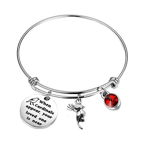 PLITI Memorial Jewelry When Cardinals Appear Your Loved One is Near Family Loss Remembrance Sympathy Gift (Cardinals Memoria)