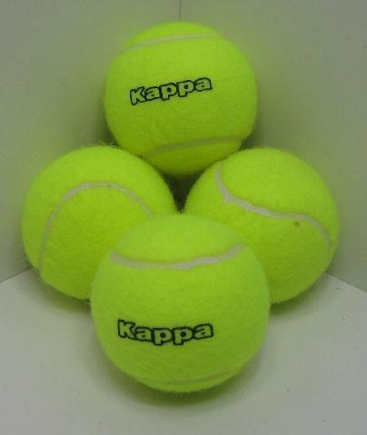 Land-Haus-Shop Tennisball SET 4 Stück inkl. Dose für Sport und Spaß, Tennis Spiel Ball Bälle (LHS)