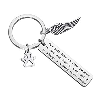 CYTING Pet Memorial Gift Our Pets Lead Us from Patience to Love and Then to Loss of Pet Keychain Angel Wing Jewelry Sympathy Gift for Loss of Dog Cat  Pet Memorial Keychain