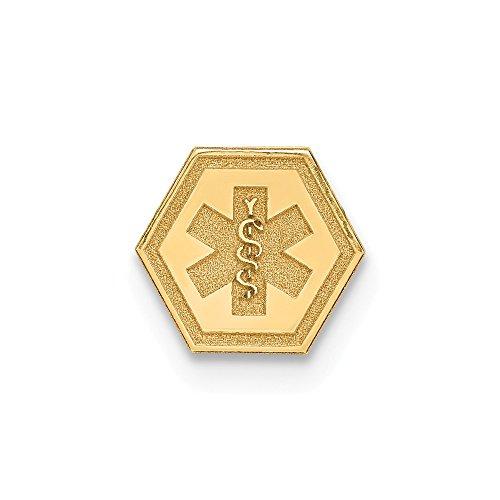 Saris and Things 14k Oro Amarillo no esmaltados acoplable médico del Emblema Encanto