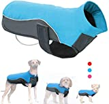 Didog Reflective Dog Winter Coat Sport Vest Jackets Snowsuit Apparel - 8 for Small Medium Large Dogs,Blue,2XL Size