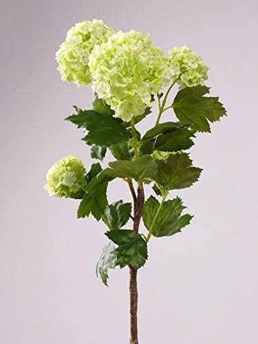 artplants.de Set 5 x Ramas de Bola de Nieve sintéticas JIVA, Verde, 50cm, Ø4-7cm - Pack de Ramas de viburno Artificial - Sauquillo Textil