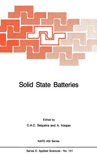 Solid State Batteries (Nato Science Series E: (101), Band 101)