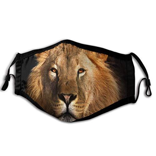 Lion King Mode geïsoleerde oorhaak ventilatie stofmasker ademen volledig masker stof en pollen
