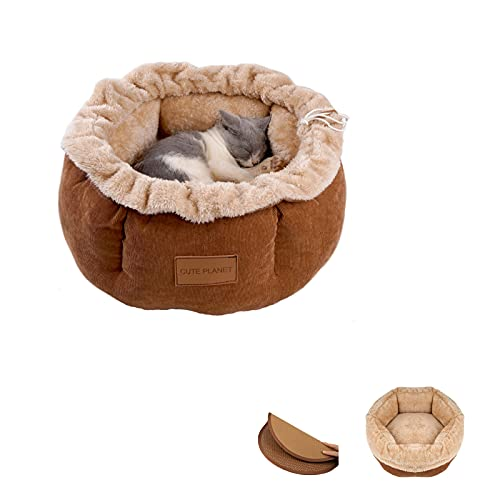 GAPZER Cat Bed with Rattan Mat, Machine Washable Anti-Slip Durable Kitten Puppy Beds for Indoor Cats...
