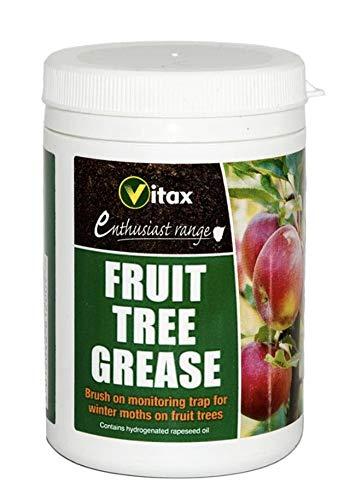 Arbre à fruits Graisse 200 g
