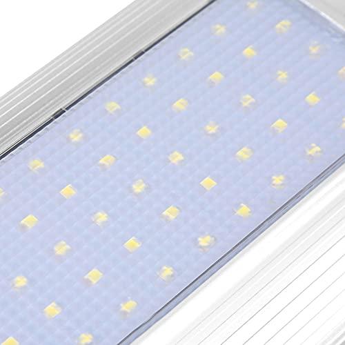 Mothinessto Luz Solar Favorable al Medio Ambiente para Patio al Aire Libre