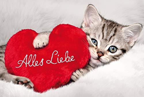 BSB Biglietto di auguri di compleanno 'Alles Liebe' con piccolo gatto 412018-2