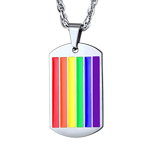 bandmax Rainbow LGBT Gay Pride Necklace & Pendant Jewelry Stainless Steel Necklace for Men/Women with 22Inches Chain(Silver)