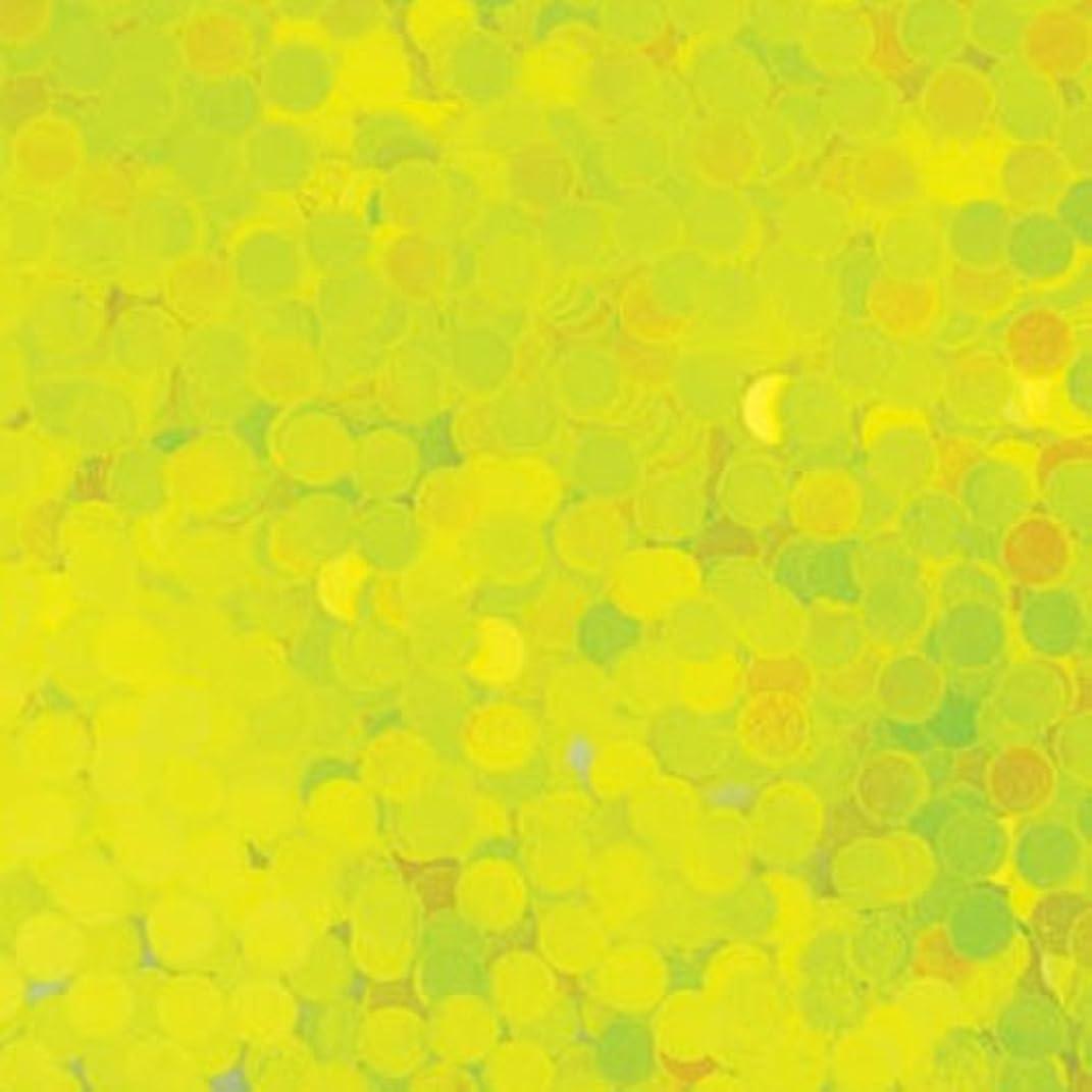 体系的に放映提出するピカエース ネイル用パウダー 丸蛍光 2mm #446 レモン 0.5g