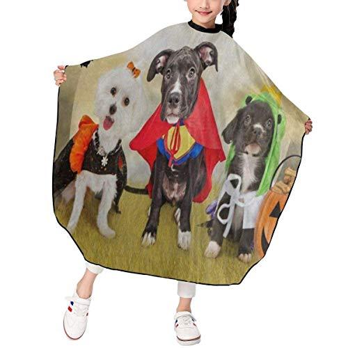 - Welpen Hund Kostüme Kit