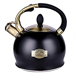 Top 5 Best Tea Kettles 2020