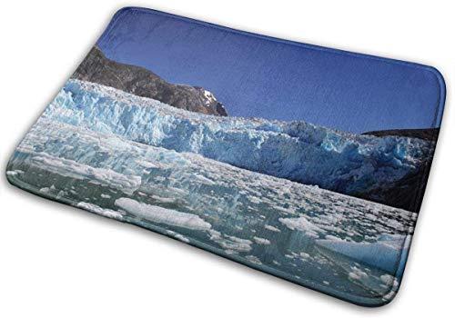 RedBean93 Tracy Arm Fjord Alaska Ice - Felpudo de Entrada para Interiores, Absorbente, Lavable, Antideslizante, Alfombra de Bienvenida para Cocina, baño, 40 x 60 cm