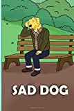 SAD DOG: BOJACK HORSEMAN: notebook, perfect for school, perfect for your kid, before&after notebook