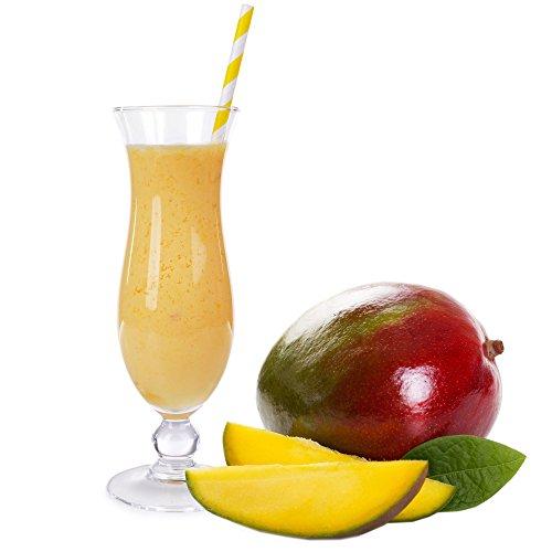 Mango Molkepulver Luxofit mit L-Carnitin Protein angereichert Aspartamfreier Wellnessdrink (1 kg)
