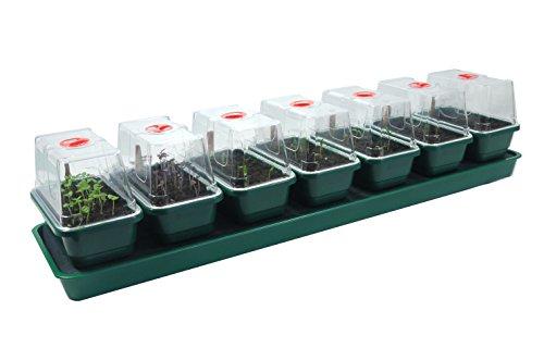 Britten & James® Propagador de Riego Automático para Plantas con Bandeja de Depósito, Plataforma, Estera Capilar y 7 Mini Bandejas de Semillas con Tapas Ventiladas Transparentes de Lado Alto