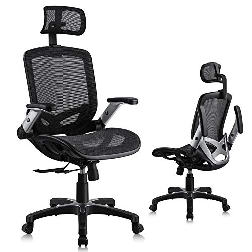 Lenuages Ergonomic Office Chair, Mesh Chair with Adjustable Seat...