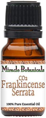 Top 10 Best frankincense serrata essential oil Reviews
