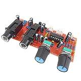 HehiFRlark PT2399 NE5532 - Panel de reverberación preamplificador para tarjeta de amplificador de micrófono, color rojo y negro