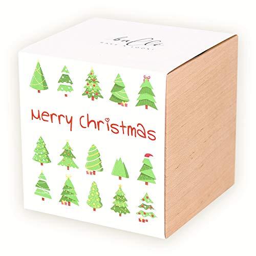Weihnachtsbaum Merry Christmas Xmas Tree Anzucht Set - ökologisches Geschenk mit echte Fichten, Modell Bäume