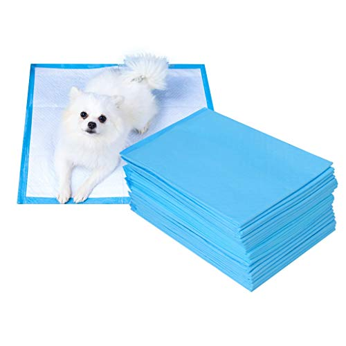 Puppy Dog Training Onbenullige Pee Piddle Pads Ultra-absorberend Pet Pee Pee Pads For Puppy Housebreaking, Club Pet Training En Puppy Pads, Regular En Extra Large (Size : L-40 pcs)