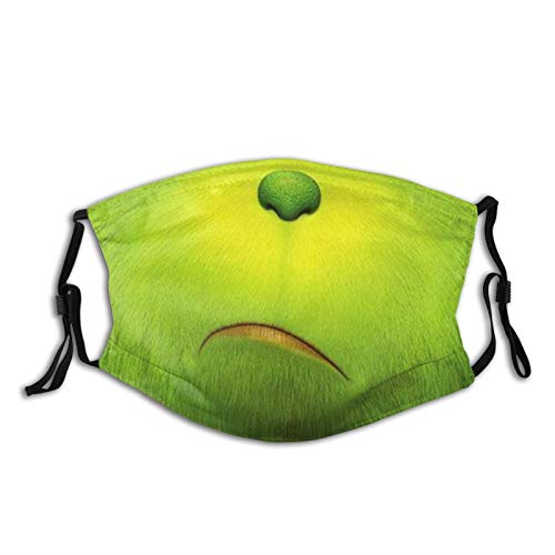 The Grinch Christmas Face Mask with 2pcs Filter Face Cover for Men Women