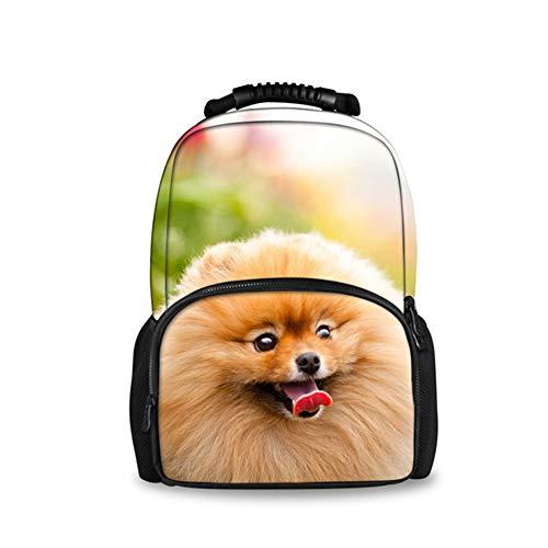 fhdc Rucksäcke Marke Frauen Reisen Schulter Rucksack Nette 3D Pommerschen Hund Frau Schule Laptop Taschen Täglichen RucksäckeH616A