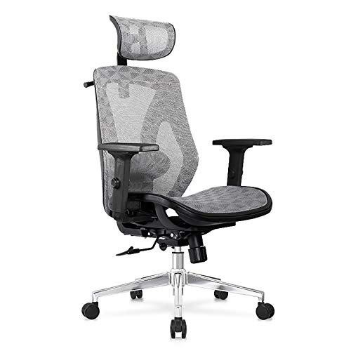 Lefran Ergonomic Mesh Office Chair,High Back Computer Chair Gaming Chair Adjustable Headrest Armrest,Home Desk Chair Wheels-Gray