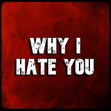 Why I Hate You